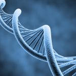 Genetic Engineering Is Not Just About Food