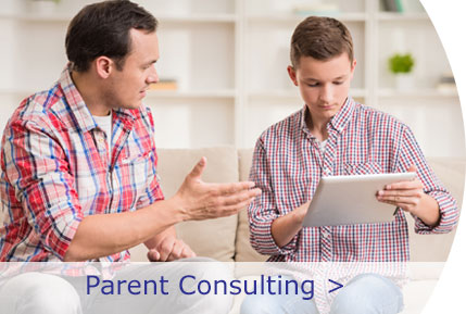 Parent Consulting Button